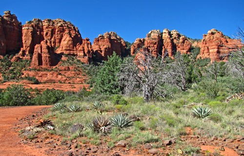 A Sacred Path to Your Dreams Sedona Retreat 5